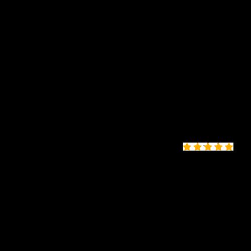 Over 100 Google Reviews Logo